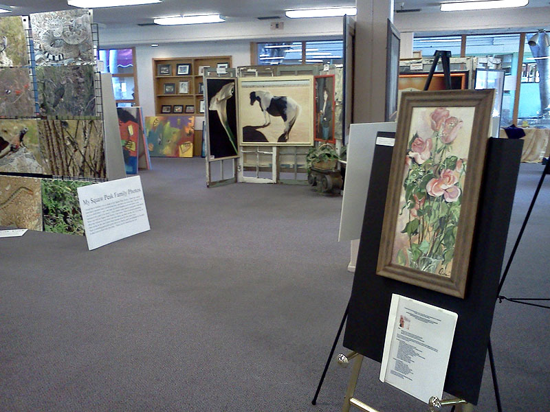 Pop-Up Gallery at the Town and Country Mall